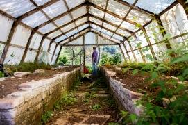 Unused Greenhouse